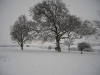 Farthing Down - sign - Christmas 2009 - snow_0.JPG