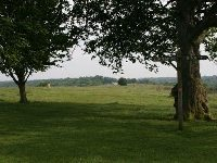 Farthing Downs - sign - 4th May 08 ecra 047_0.jpg